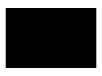 Wella Professionals Brand Logo